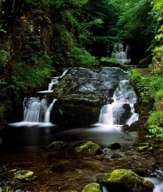 Waterfall Tea Rooms