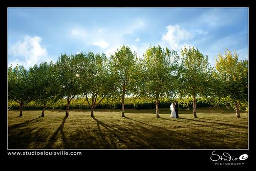 wedding photographer louisville louisvilleweddingphotographer