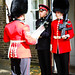 Guards of England :)