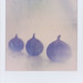 Figs by Smartiesmarts