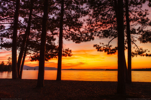trees sunset lake mountains reflection nature pine landscape maine redsky mooseheadlake greenvillemaine lilybay lilybaymaine piscataquiscounty platinumheartaward lilybaystatepark