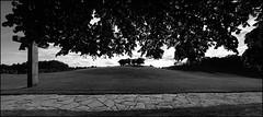 Almhöjden, Skogskyrkogården