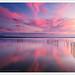 Purple dusk II by Salva del Saz