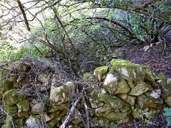 Montée à Bocca d'Alzeta Longa : une ancienne bergerie