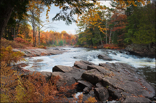 morning ontario canada fall nature colors river rapids oxtongue