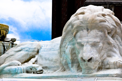 Lion statue at the President William McKinley Monument on Niagara Square - Buffalo New York