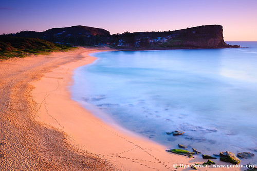 Early Morning at Avalon Beach, Sydney, NSW, Australia by Ilya Genkin