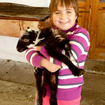 Girl with Pet Lamb - Crete