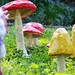 my paper mache toadstools are unicorn friendly by grrl+dog