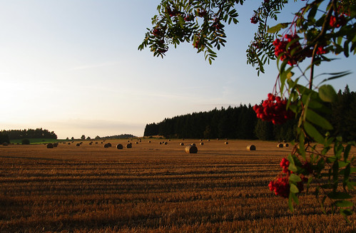 autumn sunset summer field highlands view czech dusk illumination straw czechrepublic hay bales overlook bale haybales strawbales vysočina česko českárepublika vysocina vrchovina ceskomoravska czechmoravian českomoravskávrchovina ceskomoravskavrchovina czechmoravianhighlands
