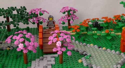 Lone samurai (1)