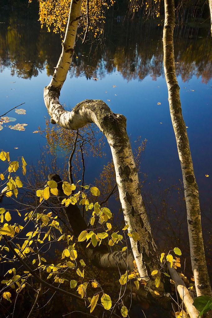 Kaitaa - Espoo, Finland - Around Guides