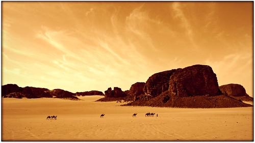 2.- Algerian desert.