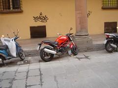 Bologna Nov_06047