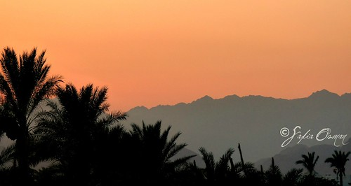 sunset mountains silhouette rocks redsea egypt sharmelsheikh middleeast palmtrees palmiers sinai egypte coucherdesoleil arabiangulf montagnes مصر saf mountainscape sinaipeninsula جبال sinaï moyenorient سيناء cityofpeace شرمالشيخ sharmalshaykh الشرقالأوسط southsinaigovernorate panasoniclumixdmcfz28 charmelcheikh safiaosman sinaïsud جنوبسينا شبهجزيرةسينا محافظةجنوبسينا alkalinegranites