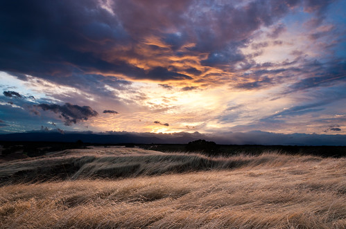 california sunset landscape country hills pasture oaks oats grasslands nohdr