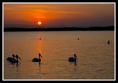 Hayes Inlet Clontarf Sunset-2=