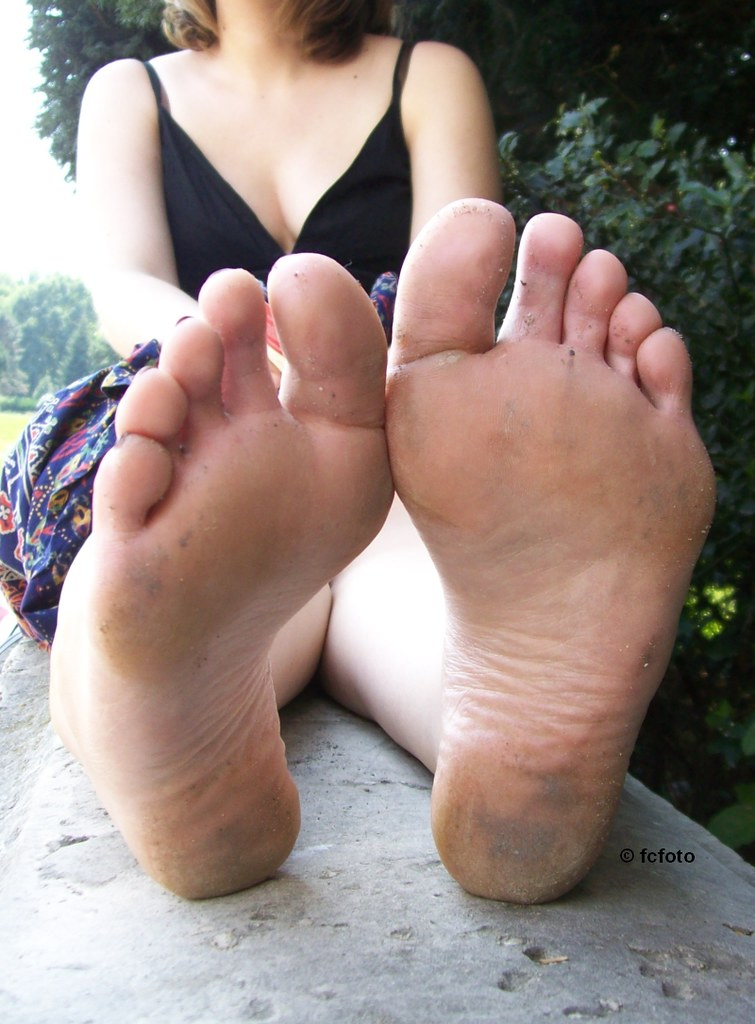 Fred Sweet Soles Related Keywords Fred Sweet Soles Long