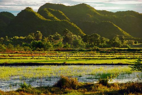 thailand thai tropical kanchanaburi