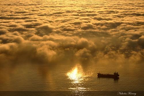 sea sun mist nature fog clouds sunrise nikon ship wildlife gibraltar animalplanet d300s nikond300s nicholasferrary