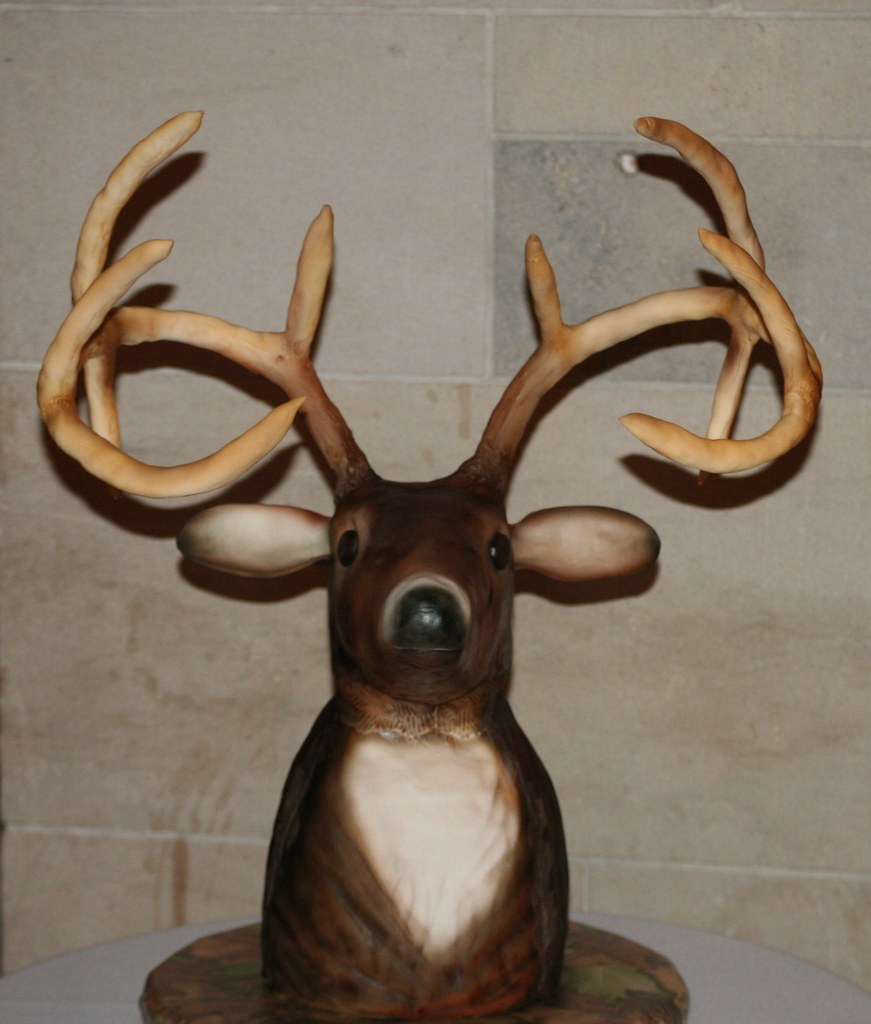 Deer Hunting Cake Decorating Kit