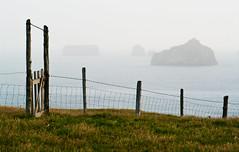 Gate and sea
