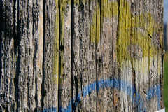 old grafitti on an old power pole
