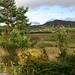 Laggan, Inverness-shire, Scotland 2005