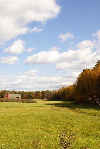 Dame Farm