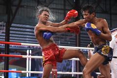 striking combat sports, professional boxing, individual sports, contact sport, sports, combat sport, muay thai, shoot boxing, muscle, kickboxing, sanshou, punch, boxing,