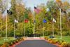 Flags at Veteran's Memorial Park