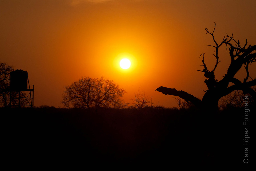 Puesta de sol en Kruger