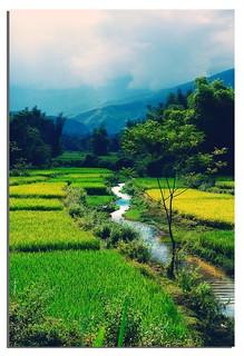 Hello Vietnam(Explore)