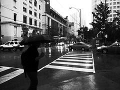 King St. rain