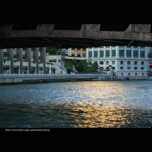 bridge sunset sunlight chicago reflection water buildings river square golden surface chicagoriver tones thegalaxy