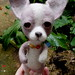 needle felted chihuahua 7