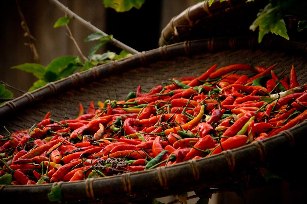 Chillies, Laos