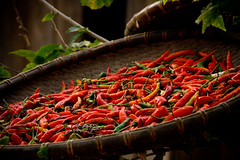 Chillies, Laos
