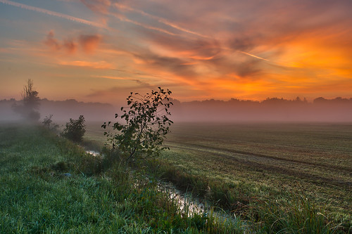 mist sunrise dawn hdr 2011 tonemapping mönchbruch