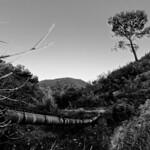 Fotos de Argelita
