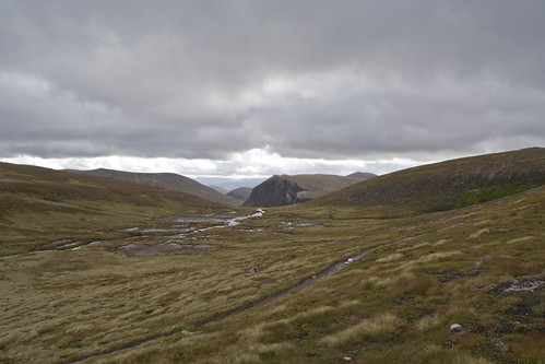 On the Plateau