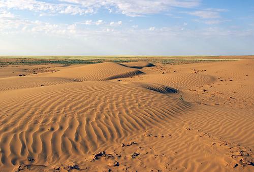 russia dunes kalmykia steppe
