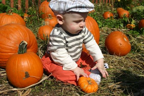 Pumpkin Patch Kid