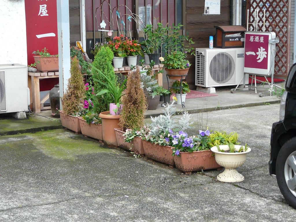 Parking Garden