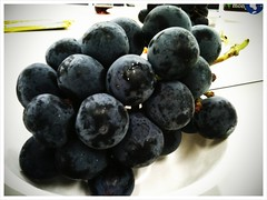 blueberry(0.0), plant(0.0), damson(0.0), bilberry(0.0), zante currant(0.0), berry(1.0), frutti di bosco(1.0), grape(1.0), produce(1.0), fruit(1.0), food(1.0),