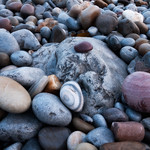 Pebble-Beach-Gower
