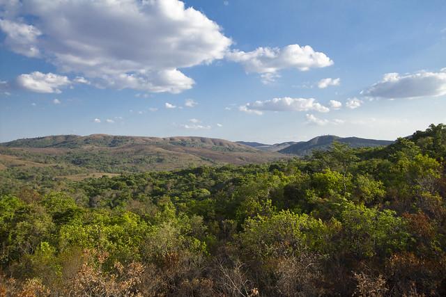 Brazilian Savanna View Cerrado Ecosystem Flickr