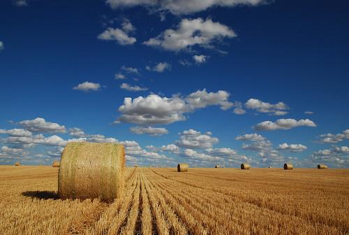 cloud canada saskatchewan grassland prairies