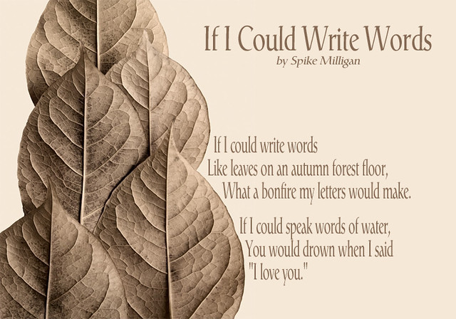 If-I-Could-Write-Words