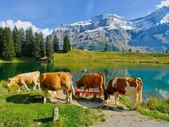 Lac Retaud-Alpes vaudoises